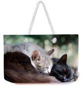 Two Cats  Sleeping  Weekender Tote Bag