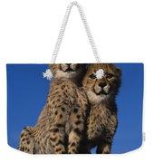 Two Cheetah Cubs Weekender Tote Bag
