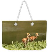 Two Chicks Weekender Tote Bag