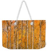 Two Colorado High Country Autumn Horses Weekender Tote Bag
