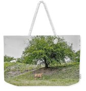 Two Cows And A Tree Weekender Tote Bag