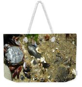 Two Crabs And One Worm Weekender Tote Bag