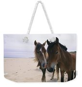 Two Curious Wild Horses On The Beach Weekender Tote Bag
