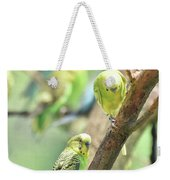 Two Cute Little Parakeets In A Tree Weekender Tote Bag