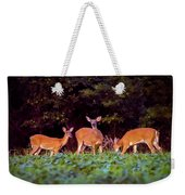Two Doe And One Buck Weekender Tote Bag