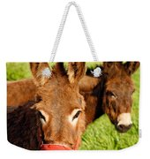 Two Donkeys Weekender Tote Bag