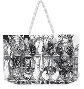 Two Dozen And One Cats Weekender Tote Bag