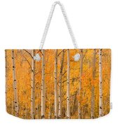 Two Horses Grazing In The Autumn Air Weekender Tote Bag