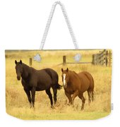 Two Horses In A Field Weekender Tote Bag