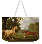 Two Horses In A Landscape Weekender Tote Bag