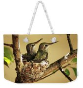 Two Hummingbird Babies In A Nest Weekender Tote Bag