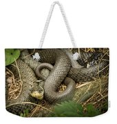 Two Intertwined Grass Snakes Lying In The Sun Weekender Tote Bag