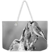 Two Little Birds Weekender Tote Bag