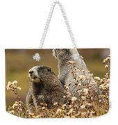 Two Marmots Weekender Tote Bag