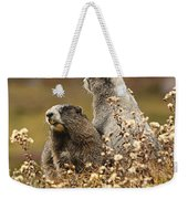 Two Marmots Weekender Tote Bag