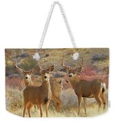 Two Men And A Lady Weekender Tote Bag