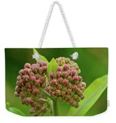 Two Milkweed Flowers Buds  Weekender Tote Bag