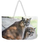 Two Mountain Lions Weekender Tote Bag