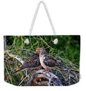 Two Mourning Doves H14 Weekender Tote Bag