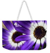 Two Purple N White Daisies Weekender Tote Bag