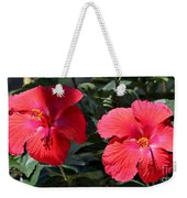 Two Red Hibiscus With Border Weekender Tote Bag