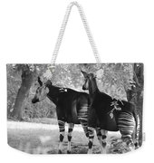 Two Stipers In Black And White Weekender Tote Bag