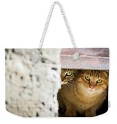 Two Stray Cats Weekender Tote Bag