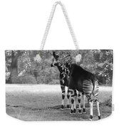 Two Stripes In Black And White Weekender Tote Bag