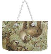Two-toed Sloth Weekender Tote Bag