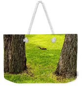Two Trees And A Squirrel Weekender Tote Bag