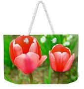 Two Tulips In Bloom  Weekender Tote Bag