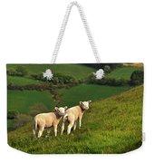 Two Welsh Lambs Weekender Tote Bag