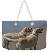 Two Yellow Labs Wait In Anticipation Weekender Tote Bag