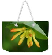 Umbrella Plant Weekender Tote Bag