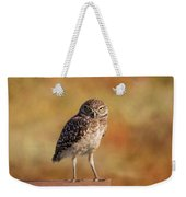 Under A Watchful Eye Weekender Tote Bag