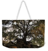 Under Spanish Moss Weekender Tote Bag by David Lee Thompson