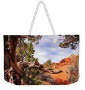 Unique Desert Beauty At Kodachrome Park In Utah Weekender Tote Bag
