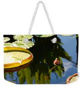 Unopened Water Lily And Reflections Weekender Tote Bag