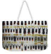 Unusual Pattern Made Out Of Many Stag Beetles Of Different Sizes Weekender Tote Bag