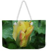 Unusual Yellow Tulip With Dew On The Petals Weekender Tote Bag