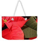 Up Close And Personal Poinsettia  Weekender Tote Bag