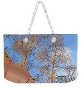 Urban Canyon Weekender Tote Bag