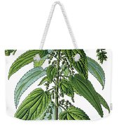Urtica Dioica, Often Called Common Nettle Or Stinging Nettle Weekender Tote Bag