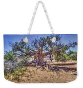 Utah Juniper On The Climb To Delicate Arch Arches National Park Weekender Tote Bag