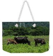 Vacas De Ahuachapan 2 Weekender Tote Bag
