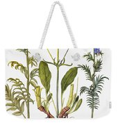 Valerian Flowers, 1613 Weekender Tote Bag