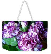Variegated Carnations Weekender Tote Bag