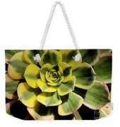 Variegated Succulent Weekender Tote Bag