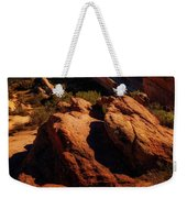 Vasquez Rocks And Stars Weekender Tote Bag
