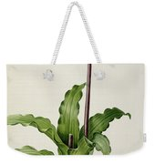 Veltheimia Capensis Weekender Tote Bag by Pierre Joseph Redoute